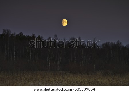 Yellow waxing gibbous moon rising over forest and grasslands. Natural background.