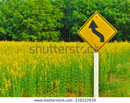 Yellow winding road sign along the natural splendor