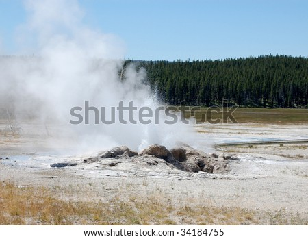 Yellowstone - Hot spring erupting with forest in background