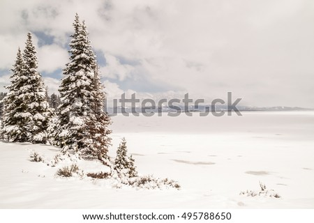 Yellowstone Lake in May with snow covered evergreens, distant mountains, bits of blue sky, and a few snowflakes