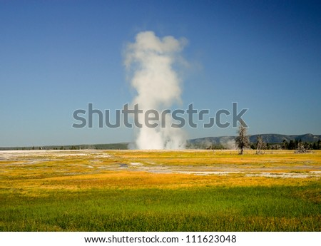 Yellowstone meadow  with geyser on the far side - stock photo