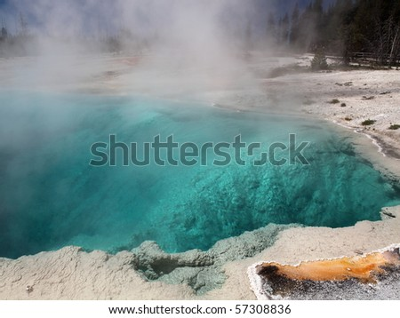 Yellowstone National Park in the state of Wyoming - stock photo