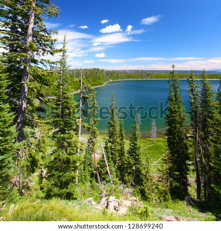 Yellowstone National Park of Wyoming USA - stock photo
