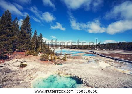 Yellowstone National Park, USA - stock photo