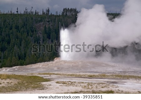 Yellowstone Old Faithful geyser erupting on background of the forest and dark sky