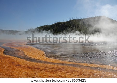 Yellowstone park hot spring