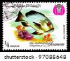 YEMEN - CIRCA 1967: A stamp printed in the Kingdom of Yemen, shows Tropical Fish, Rudder fish, circa 1967 - stock photo