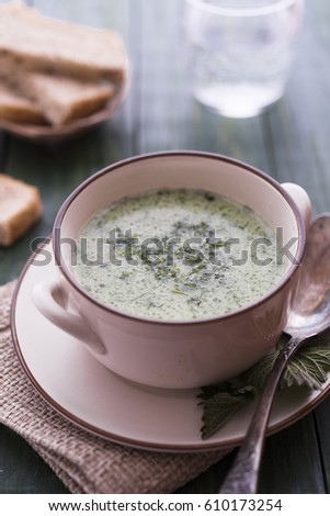 Yogurt and nettle cold soup on green table