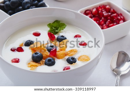 yogurt with cereals, blueberry and pomegranate in a white bowl
