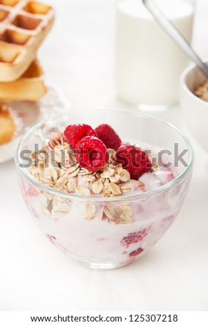 yogurt with muesli and fruits for breakfast, in the background bottle of milk and waffles - stock photo