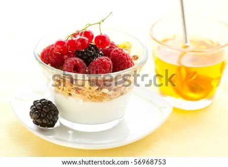 yogurt with muesli ,berries and honey - stock photo