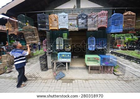 YOGYAKARTA, INDONESIA - JUNE 26, 2014: Undefined man sells birds at the Pasar Ngasem Market, polular known as Bird Market in Yogyakarta, Java, Indonesia on June 26, 2014 - stock photo