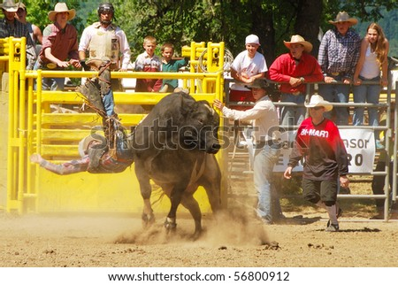 YONCALLA, OR - JULY 4: Bull Riding on the 4th of July in this Northwest Professional Rodeo Association stop in the small southern Oregon town. July 04, 2010 in Yoncalla, OR