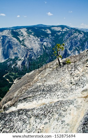 Yosemite one of the most famous National parks in California USA