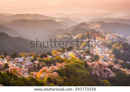 Yoshinoyama, Nara, Japan view of town and cherry trees during the spring season. - stock photo