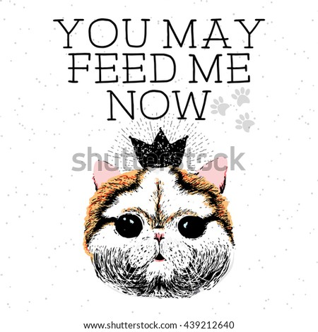 You may feed me now, hand drawn card and lettering calligraphy motivational quote for cat lovers and typographic design. Cute, friendly, smiling, inspirational kitty on textured sparkle background.