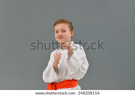 young and successful karate kid in karate positions