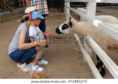 Young asia woman and her little son feeding a sheep