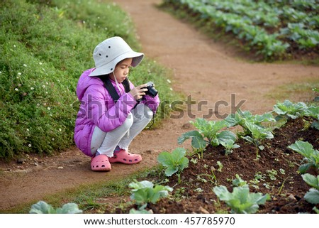 young Asian girl taking photograph of vegetable  in Maerim, Maecham, Chiangmai, north of Thailand