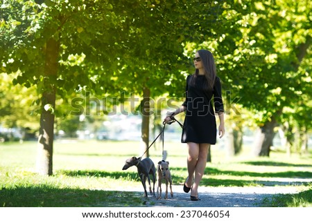 Young attractive girl  dressed elegantly  walking with two greyhounds in the park - stock photo