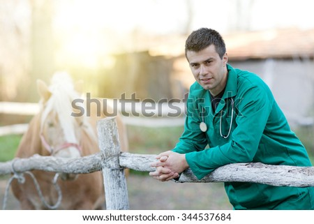 Young attractive veterinarian standing beside pony horse on the ranch - stock photo