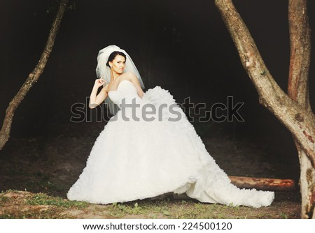 Young beautiful brunette bride. - stock photo