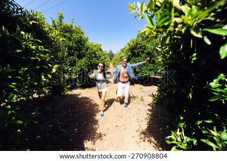young beautiful couple girl and man in sunglasses hugging in orange orchards in summer - stock photo