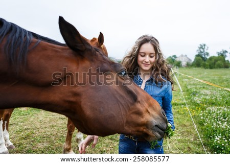 Young beautiful girl feeding a horse at summer time
