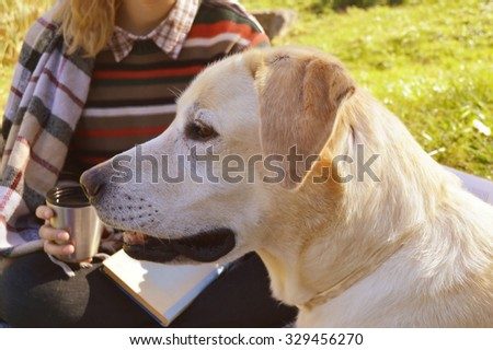 young,beautiful girl wrapped in a warm plaid  sitting with her dog Labrador and drinking hot tea and reading a book in the Park