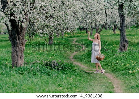 Young beautiful pregnant woman,blonde, in a white dress and with a basket in hand walking in a blooming Apple orchard