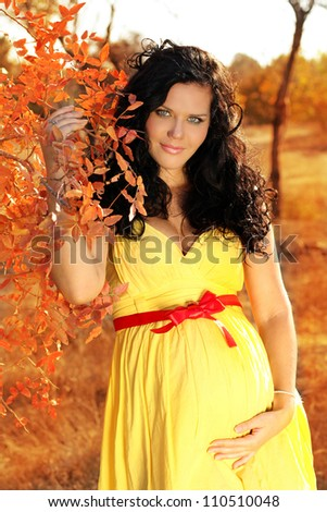 Young beautiful pregnant woman in autumn - stock photo