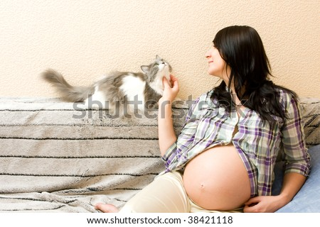 Young beautiful pregnant woman playing with her cat - stock photo