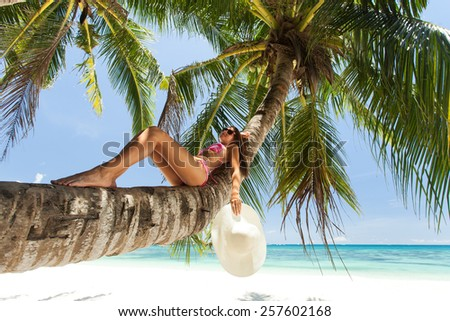 Young beautiful woman lying on a palm tree - stock photo