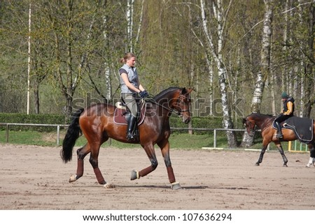 Young blonde woman riding latvian breed bay horse, working trot - stock photo