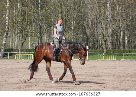 Young blonde woman riding latvian breed bay horse, working trot