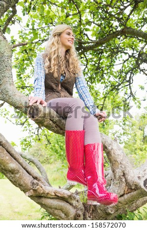 Young blonde woman sitting in a tree in the garden on sunny day - stock photo
