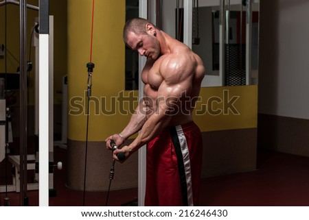 Young Bodybuilder Doing Heavy Weight Exercise For Biceps - stock photo