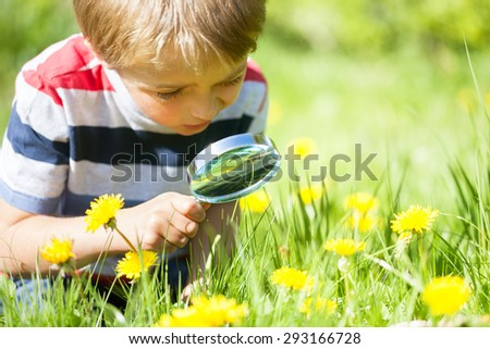 Young boy exploring nature in a meadow with a magnifying glass looking for insects - stock photo