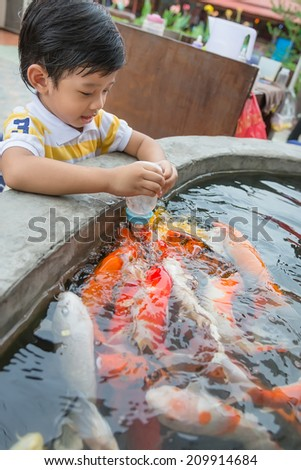 Fish feeding stock images royalty free images vectors for What to feed baby koi