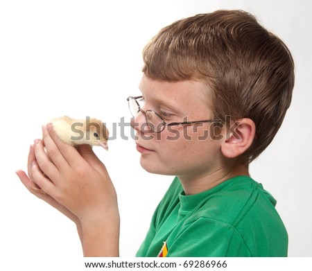 Young boy holding and observing young turkey - stock photo