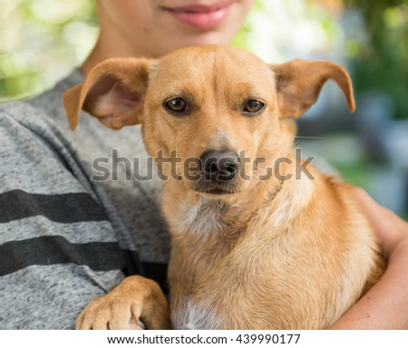 Young Boy Holding Terrier Mix Outside in Park