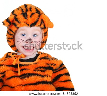 Young boy in a Halloween tiger costume