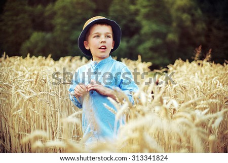Young boy in the wheat field - stock photo