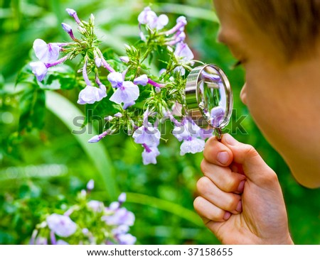 Young boy looking at flower through hand magnifier, shallow DOF - stock photo