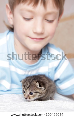 young boy playing with kitten at home - stock photo
