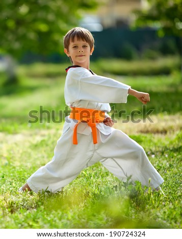 Young boy practicing martial arts outside in spring - stock photo