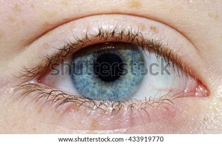 Young Boy's Eye - stock photo