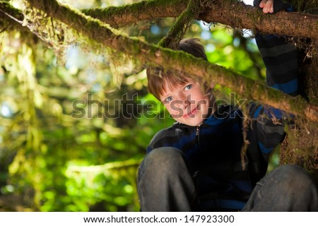 Young boy sitting in a tree smiling - stock photo