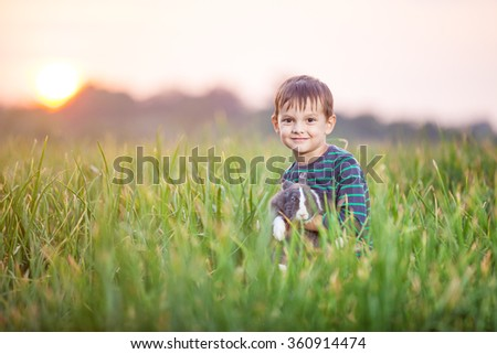 Young boy with a pet rabbit in a field at sunset - stock photo