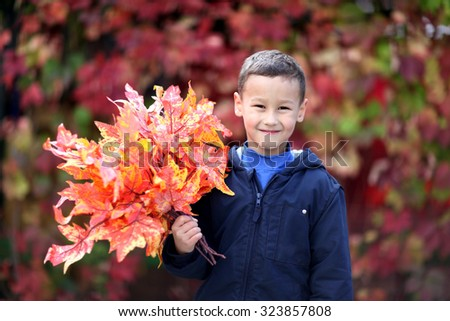 Young boy with leaves in the park - stock photo